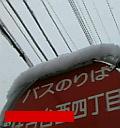 image/nunu-2006-03-01T09:06:26-1.jpg
