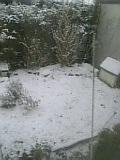 image/nunu-2006-03-30T07:37:14-1.jpg